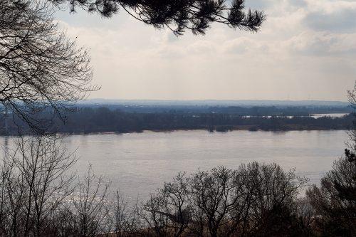 Blick über die stille Elbe bei Falkenstein