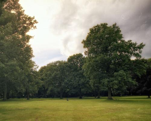 Große Wiese im Volkspark Altona - Kleinbild 35mm Analog