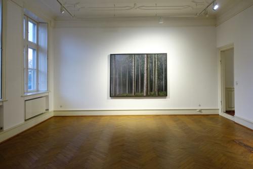 Ausstellung im Pak Glückstadt - Wald