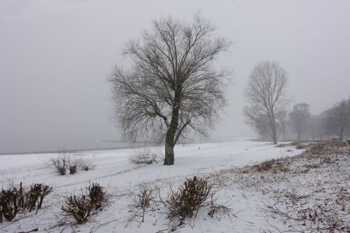 Falkenstein Elbstrand im Schnee