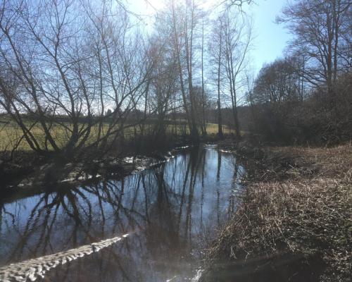 Alster im Sonnenschein bei Tangstedt
