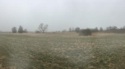 Aufziehender Nebel im Praestemose bei Horbelev