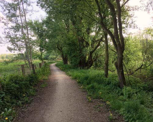 Weg Entlang der Aue bei Ahrensburg