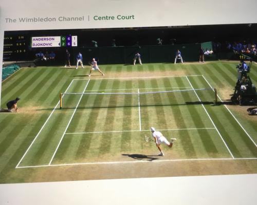 Wimbledon Endspiel Herren