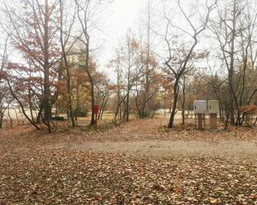 Campingplatz am Falkensteiner Ufer