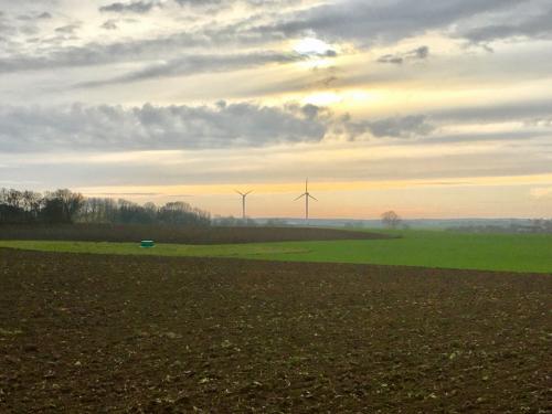 Felder in Richtung Halskov
