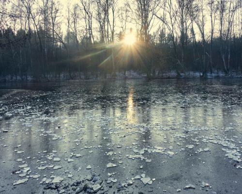 Gefrorener See bei Volksdorf