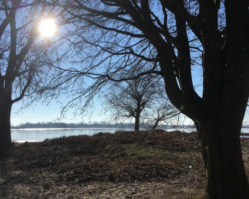 Falkensteiner Ufer in der Februarsonne