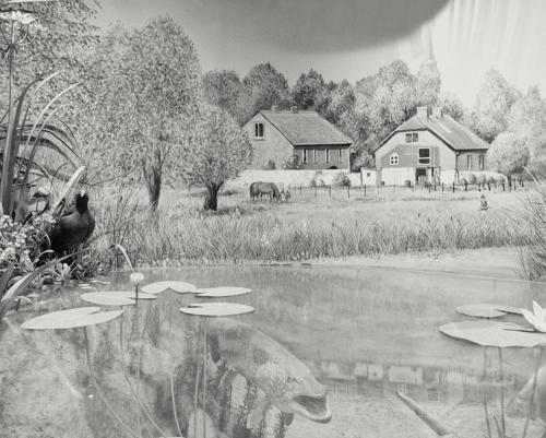 Diorama Lebensraum der Bille