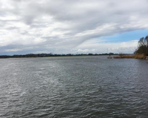 Stürmische Elbe bei Geesthacht