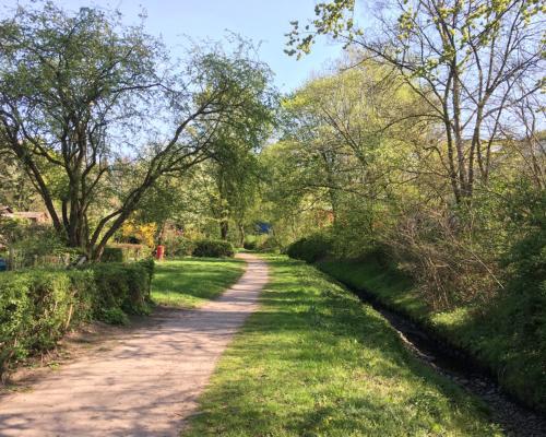 Grüner Pfad bei Eidelstedt