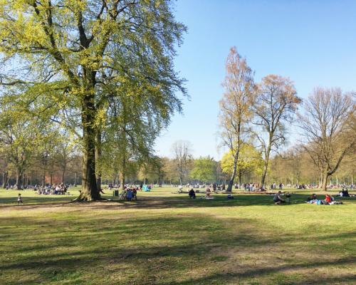 Große Wiese im Volkspark Altona