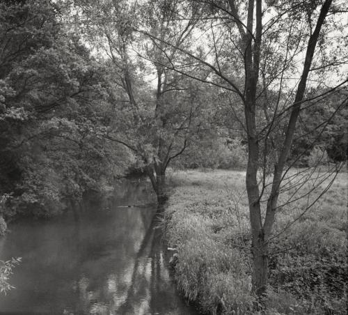 Die Bille hinter Wohltorf. Schwarzweißbild von einem Farbdia im Format 6x9 auf Kodak Ektar200, 25j alt.