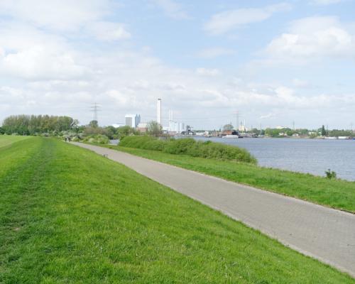 Deich zur Norderelbe, rechts der Holzhafen
