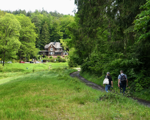 Im Haselbachtal kurz vor dem Jagdhaus Haselruhe
